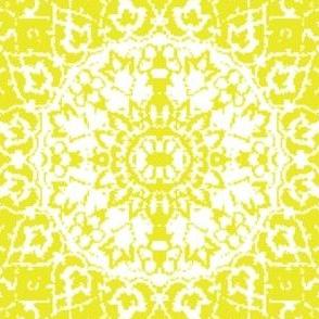 Persian-white mustard xl