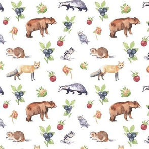 Woodland Animals on White