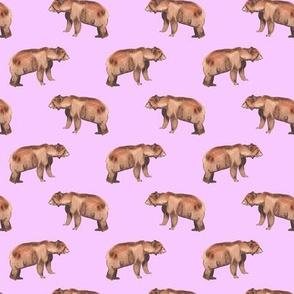 Woodland Bear Pink