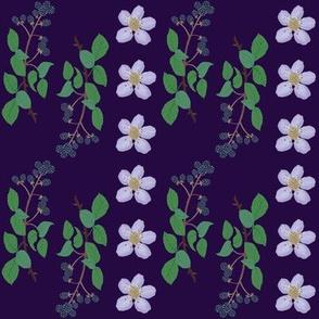 Bramblebush on violet