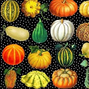 Pumpkins on black dots