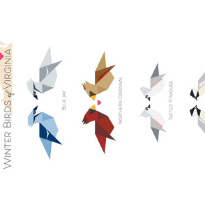 winter birds of VA