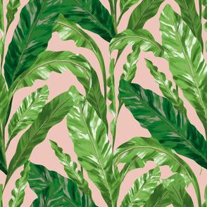 Tropical Leaves Pink