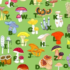 Mushroom ABCs Large Print