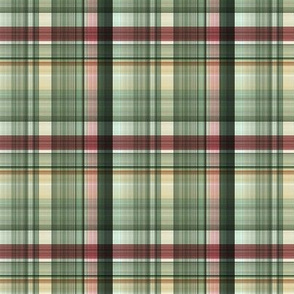 CHRISTMAS TARTAN A | Rustic Plaid |Renee Davis