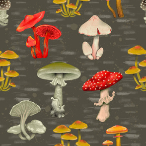 hand draw  poisonous  mushrooms on gray
