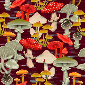 hand draw  poisonous  mushrooms