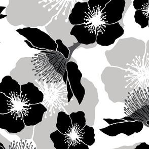 Blackberry Blossom - Black and White