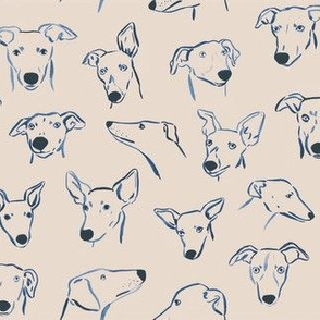 Sighthound Faces