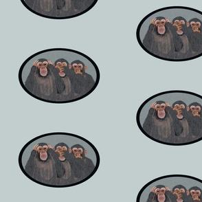 Chimpanzees as 3 Wise Monkeys