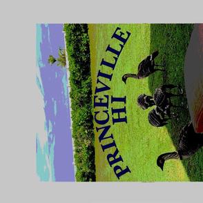 Destination Princeville, HI