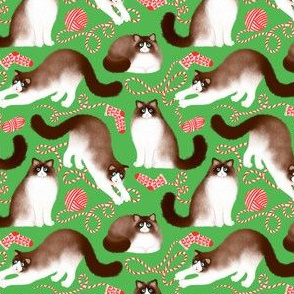 Ragdoll Cats and Knitwork (Green Background) – Small Scale