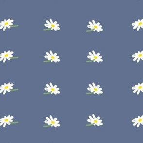 Daisies on Blue Grey