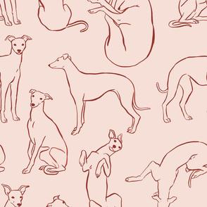 Peach Whippet Pattern