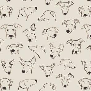 Sighthound Faces Beige