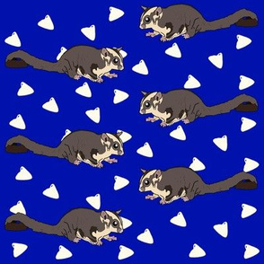 Sugar glider and yoggies on dark blue