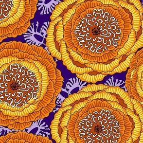 Large orange poppy flowers on a purple background