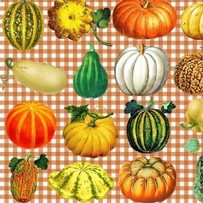 Pumpkins on autumn brown gingham