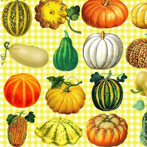 Pumpkins on bright yellow gingham