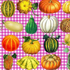 Pumpkins on magenta gingham