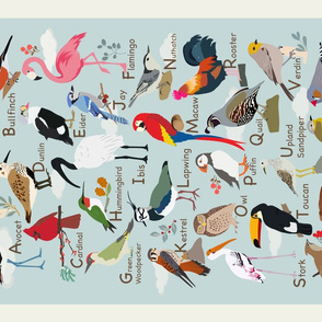 ABCs of Birds