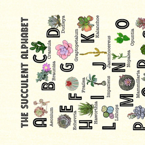 The Succulent Alphabet