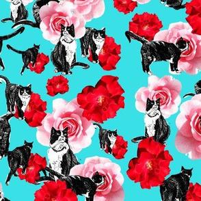 garden of meow - blue