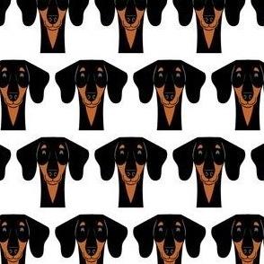dachshund fabric - doxie fabric