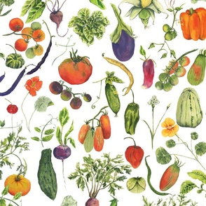 vegetable fabric no background