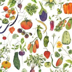 vegetable fabric white