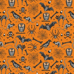 Halloween X-Ray - Orange & Black Small Scale