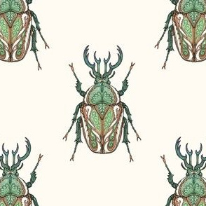 Copper Beetles