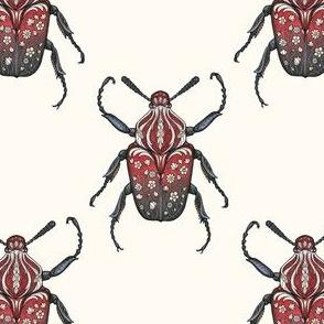 Carnelian Beetles