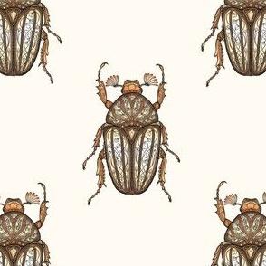 Amber Beetles