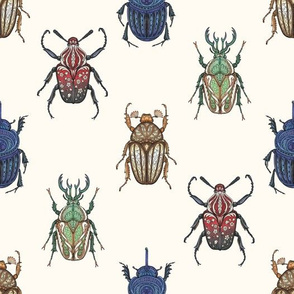 Fantasy Beetles
