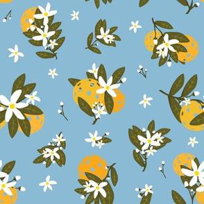 Pickleballs and Orange Blossoms  MD