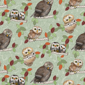 Owls and Owlets Green