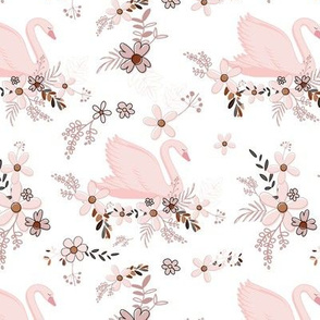 Baby Pink Swans