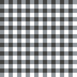 pony up: gingham in silver + iron 1 inch