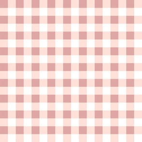 pony up: gingham in rosy blossom 1 inch