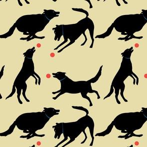The playful black dog - cream background