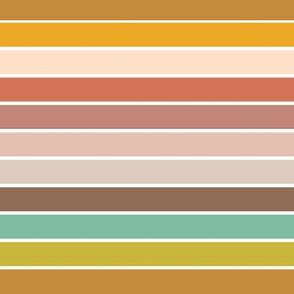 Color wheel Stripe-3.5x7.45