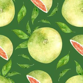 Grapefruit Large Dark Green