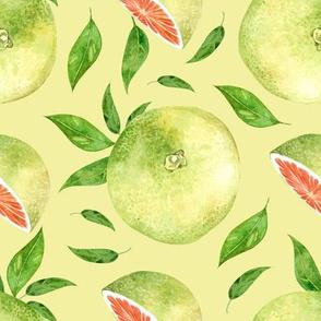 Grapefruit Large Lime