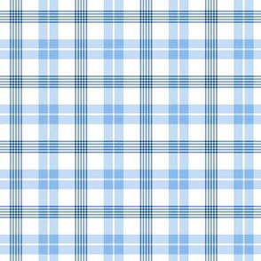 Small Blue and White Plaid Pattern