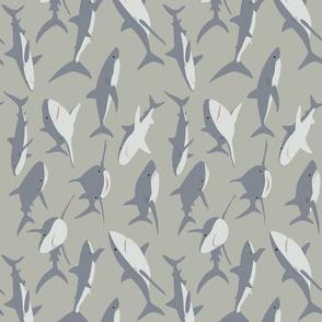 Sharks (Rotated 90 degree)