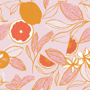 Citrus Kisses - Blush