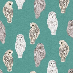Small Lovely Winter Owls on Teal Linen