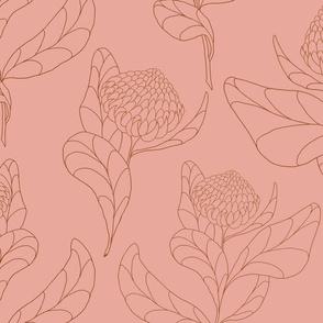 Vintage Protea Blushed