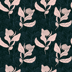 Bursting Blush Protea